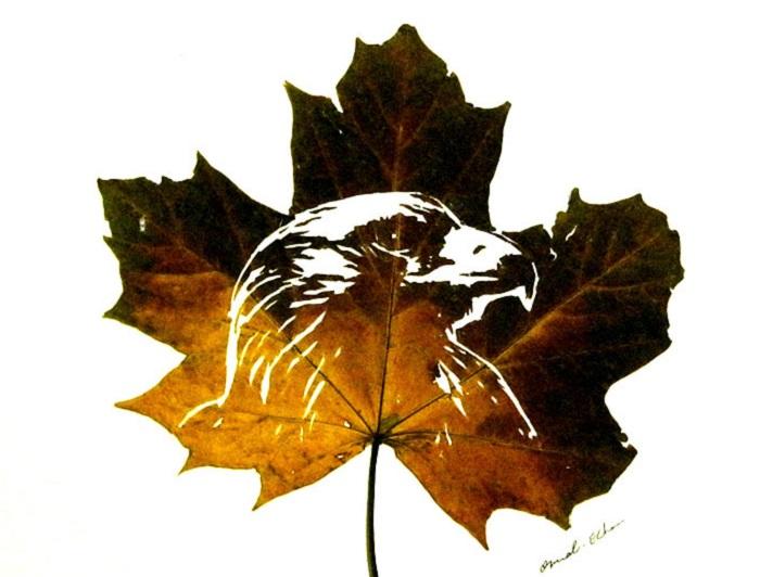 Изображение орла художника Омида Асади.