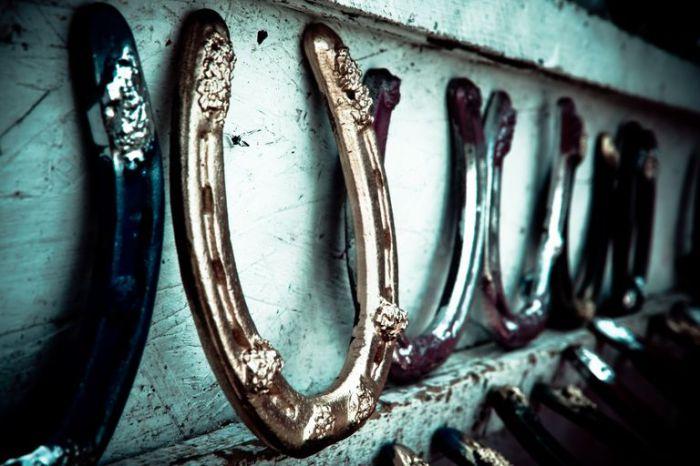 Подкова - символ удачи в любом европейском доме.   Фото: fthmb.tqn.com.