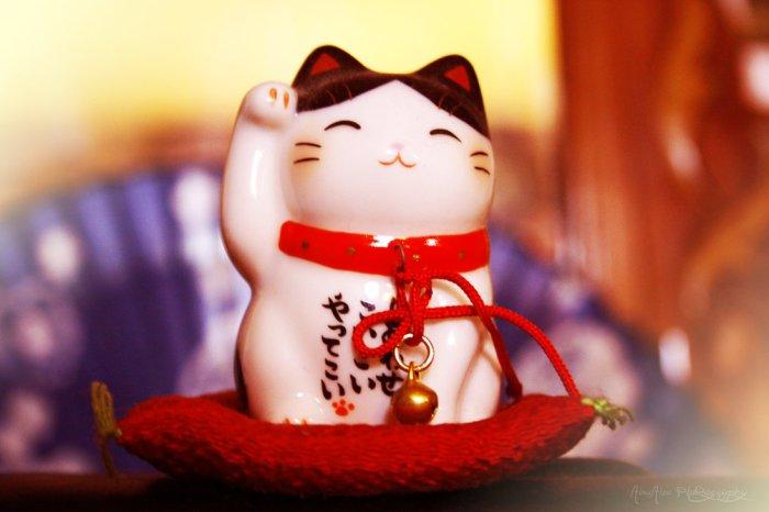 Манеки-неко - кошка, приносящая удачу в бизнесе.   Фото: meowmagz.com.