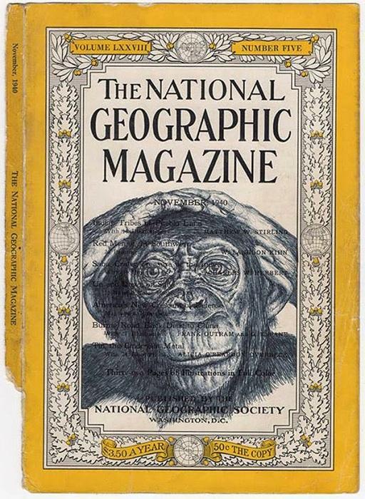 Обезьяна на обложке National Geographic.