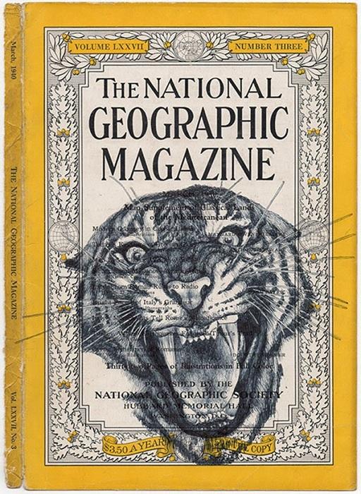 Тигр, нарисованный ручкой.