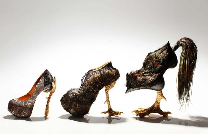 «Куриная» серия обуви от японского дизайнера.