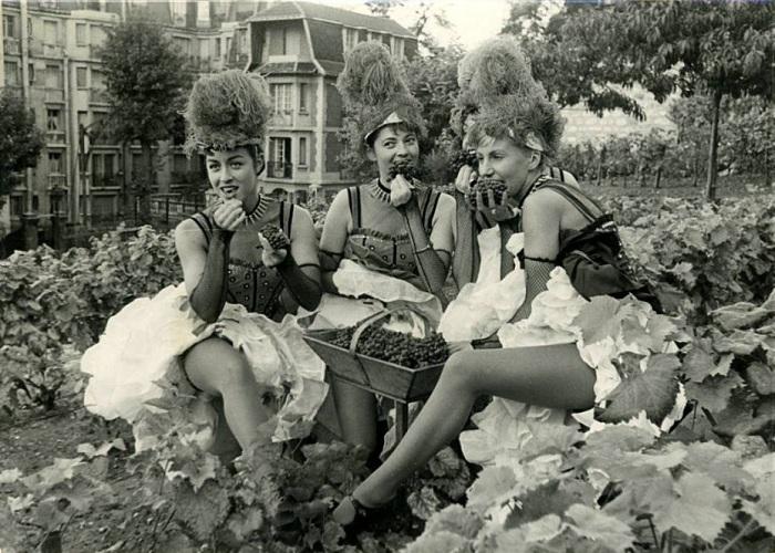 Танцовщицы из Мулен Ружа на фестивале вина в 1952 году.
