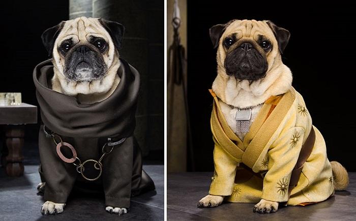 Персонажи «Игры престолов» Grand Maester Pycelle и Oberyn Martell.