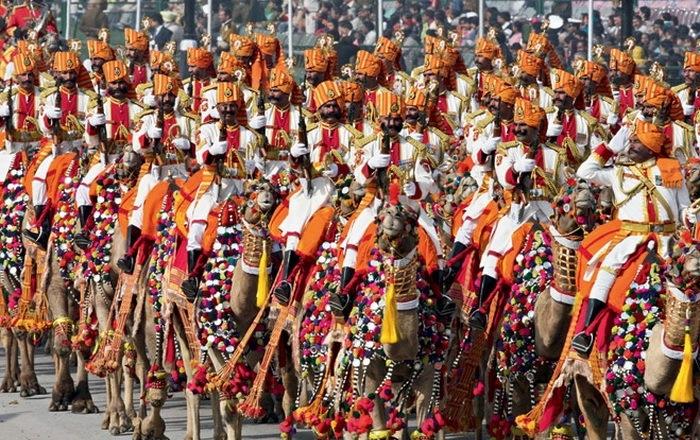 Пестрые пограничники Индии.