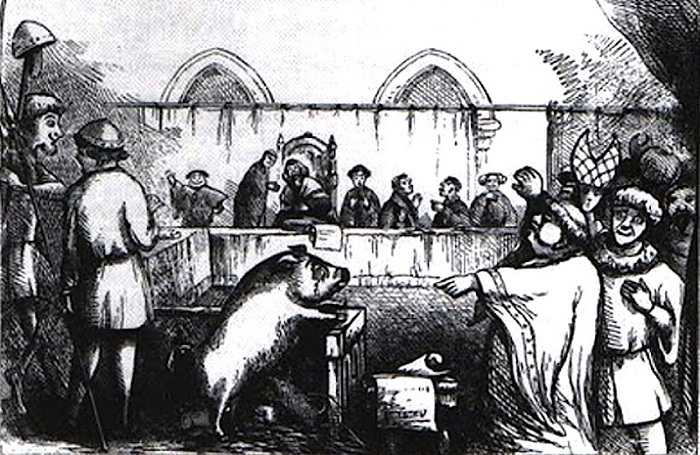 Суд над свиньей.   Фото: img-fotki.yandex.ru.