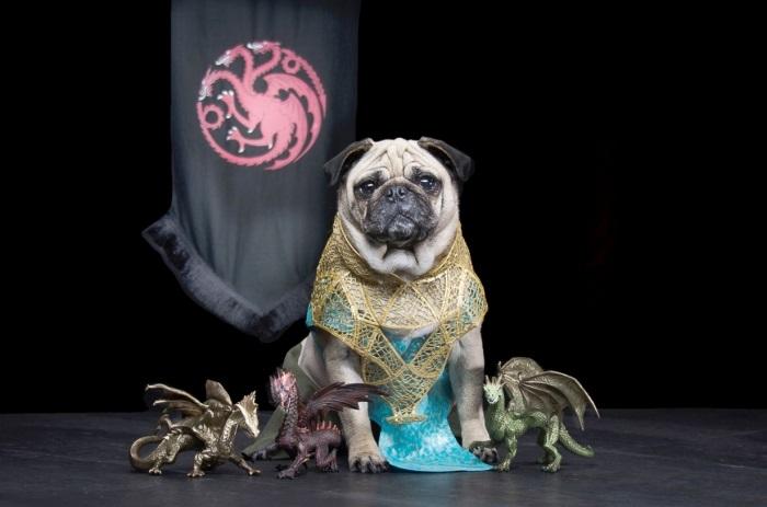 Персонаж Daeneys Targaryen.