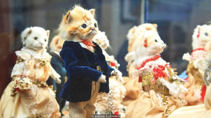 Композиция из чучел «Кошачья свадьба». | Фото: pikabu.ru.