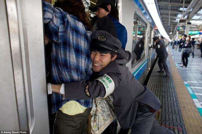 В японских метрополитенах работают профессиональные толкатели. | Фото: amusingplanet.com.