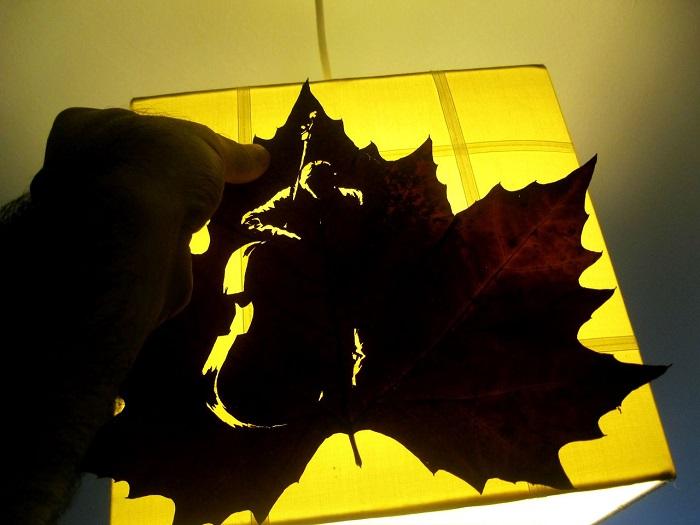 Узор на сухом листе.