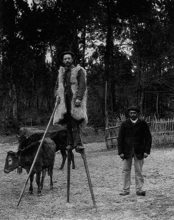 Типичный пастух на ходулях в ландах (Франция). Ок. 1930 г.