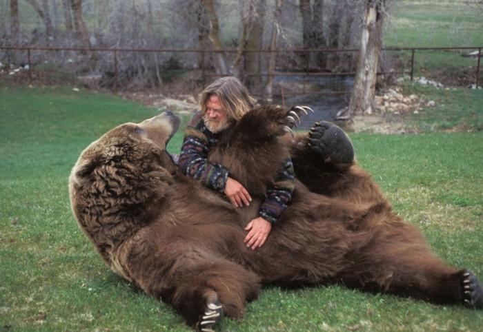 Мужчина играет с настоящим медведем.