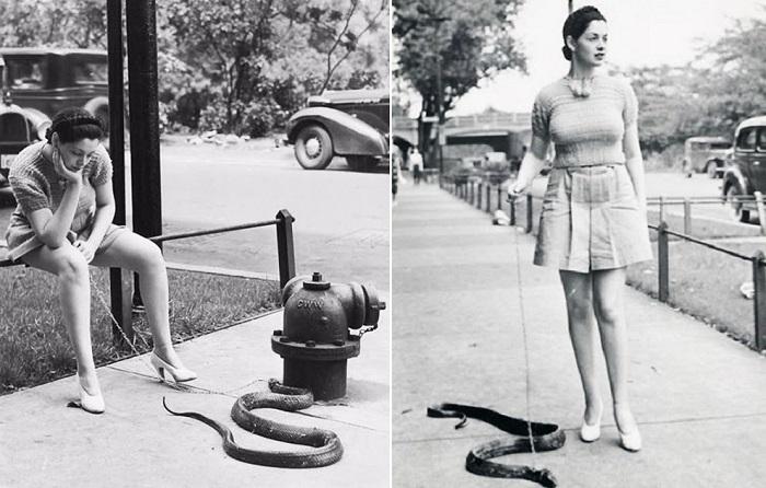 Зорита гуляет со своей змеей, держа ее на поводке. | Фото: vintag.es.