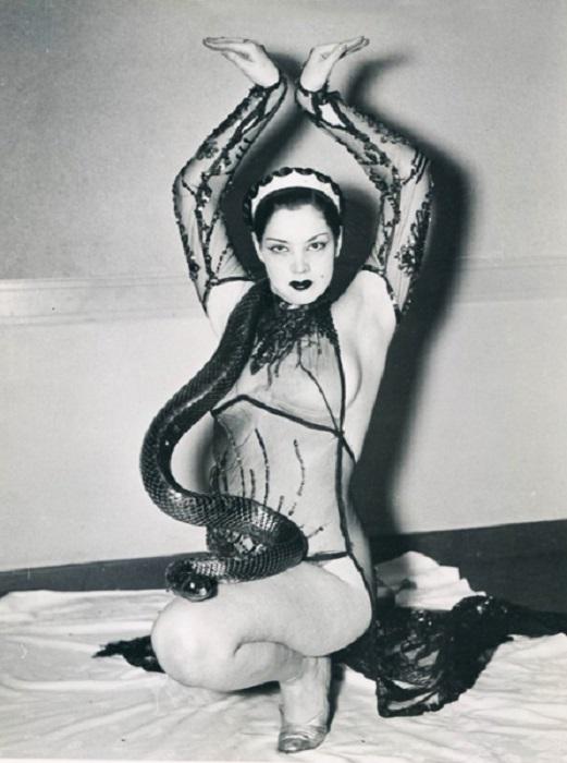 Экзотический танец со змеей. | Фото: blog.playfulpromises.com.