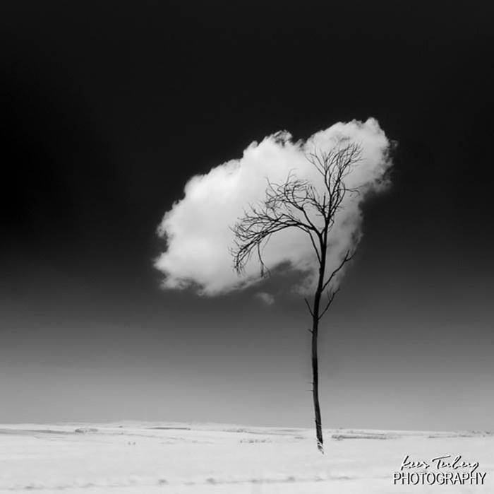 Потрясающее облако от Kees Terberg.