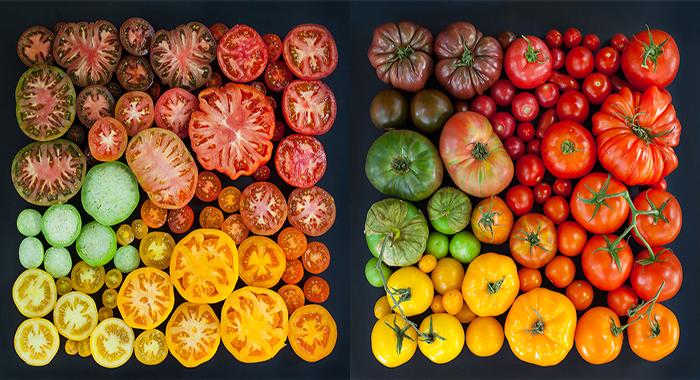 Разноцветные фото еды от Emily Blincoe.