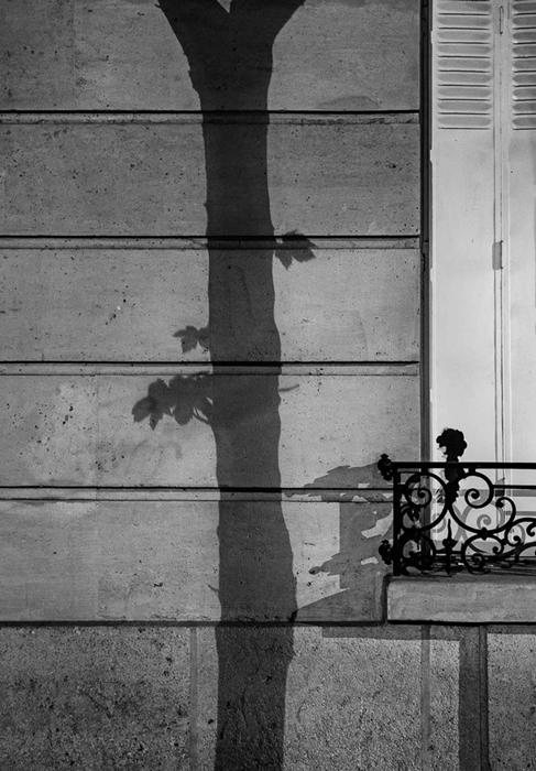 Фотографии теней на улицах Парижа.