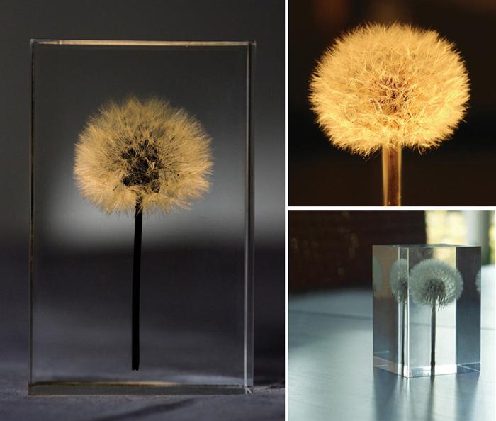 Необычные светильники от Takao Inoue.