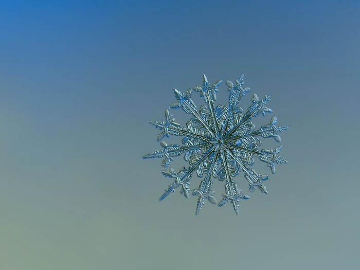 Невероятные макро-фото снежинок.