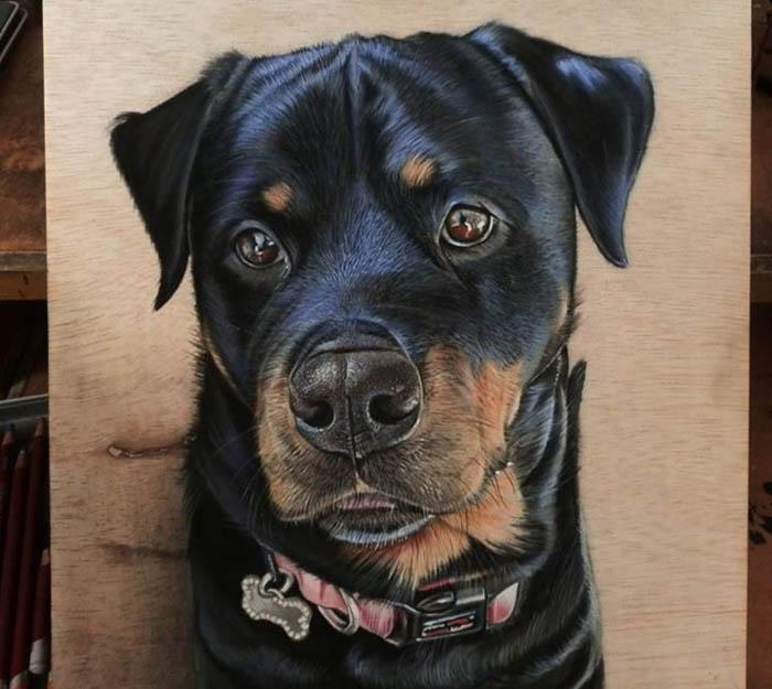 Портрет пса в стиле гиперреализм.