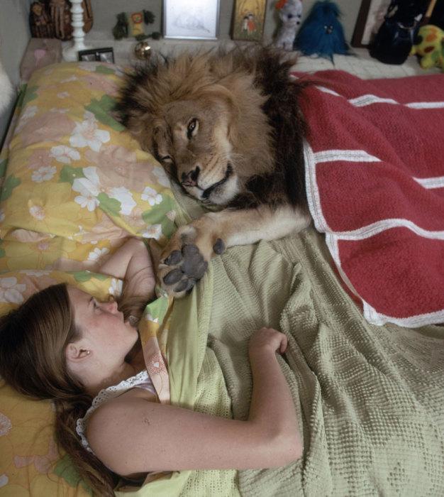 Лев спит с Мелани Гриффит.