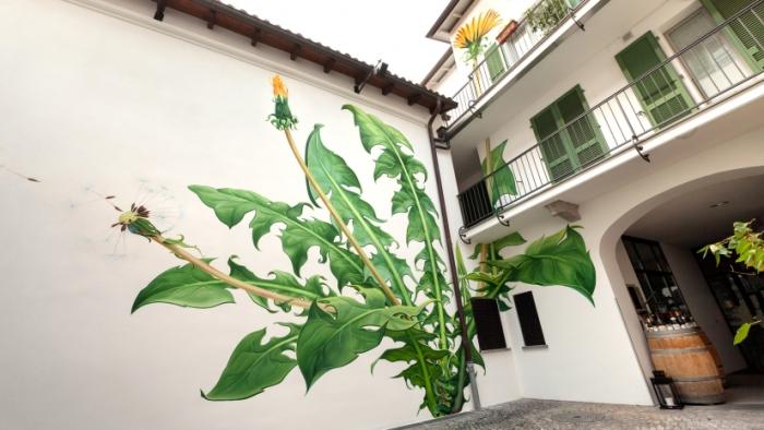 Рисунки сорняков, которые постоянно меняются.