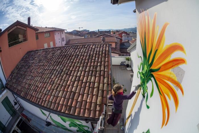 Ботанические рисунки на стенах зданий.