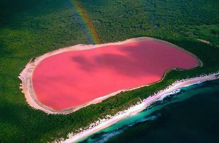 Озеро Хиллер (Розовое озеро), Австралия.
