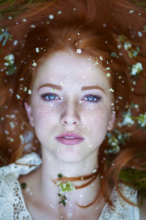 В цветении. Автор фото: Maja Topcagic.