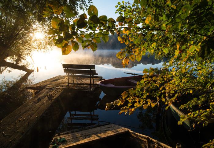 Утреннее солнце светит сквозь туман на озере в Германии. 1 октбяря 2015г.