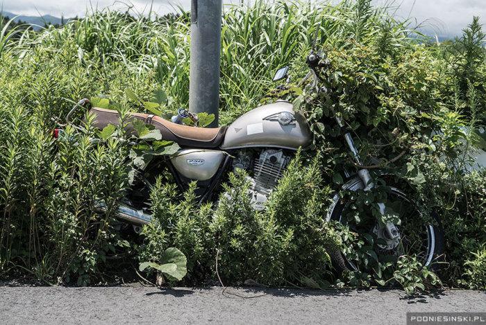 Привязанный мотоцикл медленно исчезает в траве.