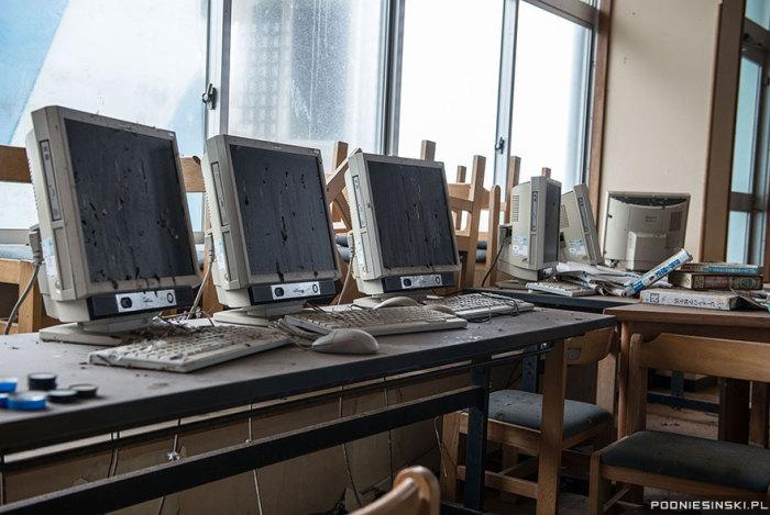 Птицы, живущие неподалеку, иногда залетают в этот компьютерный зал.