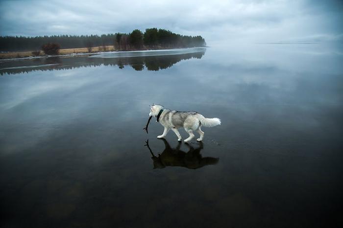 Озеро в Мурманской области.
