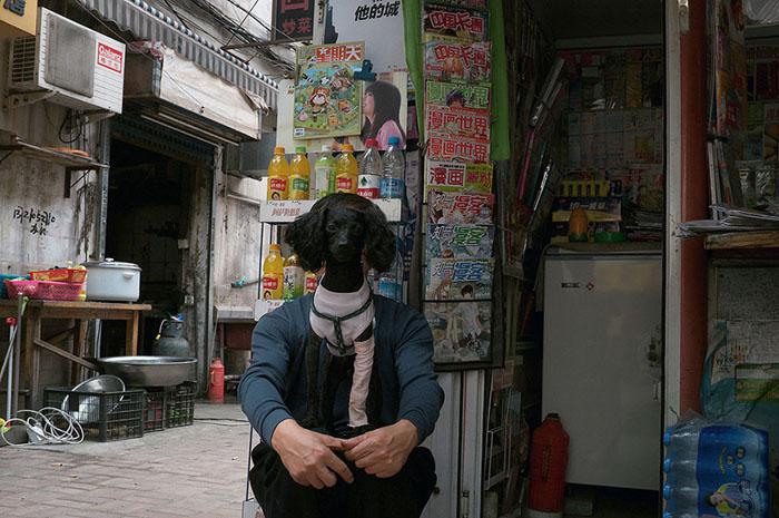 Уличные фотографии Тао Лиу.