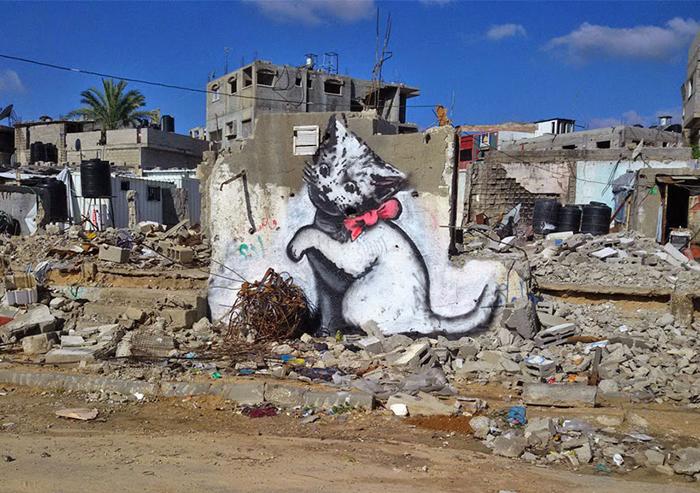 Местный житель спросил меня: Что это значит? - Я ответил: Я хотел рассказать всему миру о проблемах в Газе, но люди хотят смотреть только на фотографии котят.