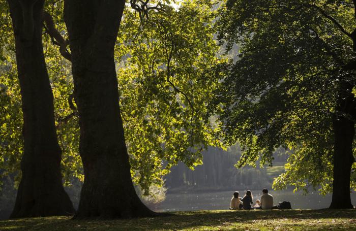 Люди наслаждаются пикником солнечным полуднем в парке Сейнт Джеймс в Лондоне. 4 октября 2015г.