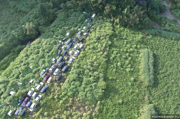 Покинутые машины медленно погружаются в море деревьев на отрезке дороги возле АЭС.