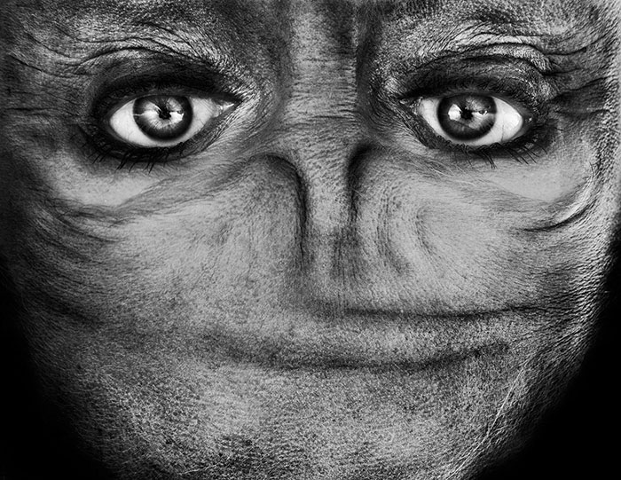Диспропорциональные лица пришельцев создают жутковатое впечатление.