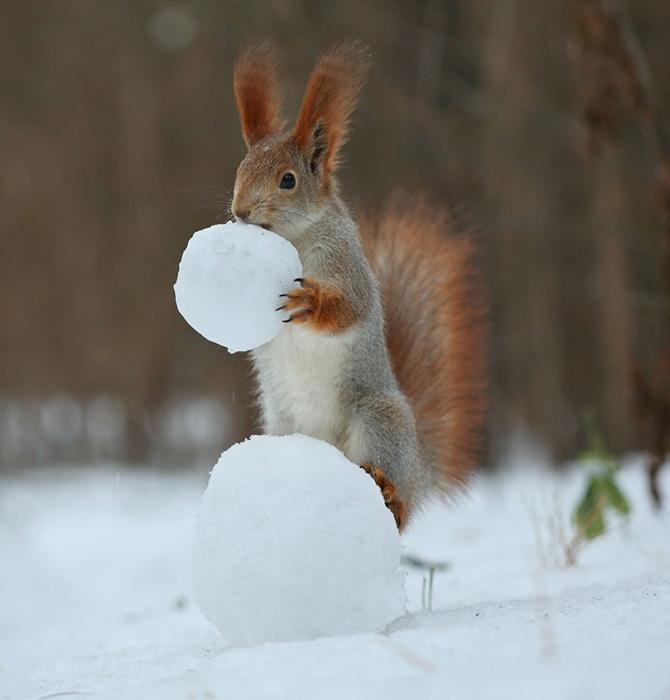 А это будет туловище для снеговика.