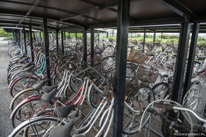 Эти велосипеды были оставлены местными жителями, бежавшими от катастрофы.