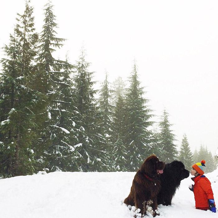 Зимой. Автор фото: Stasha Becker.