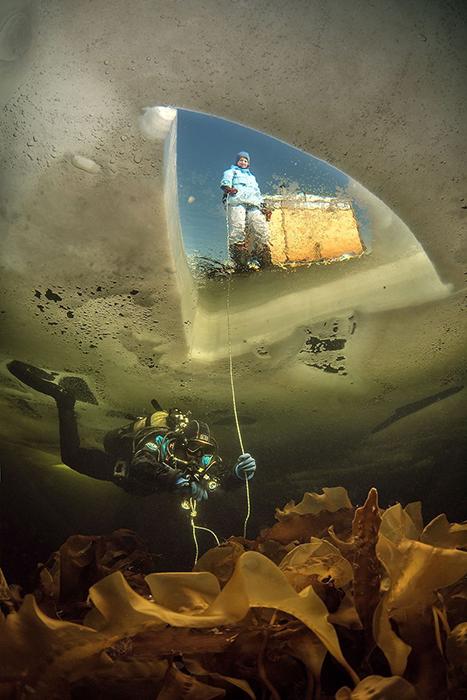 «Under Ice». Фото: Виктор Лягушкин.