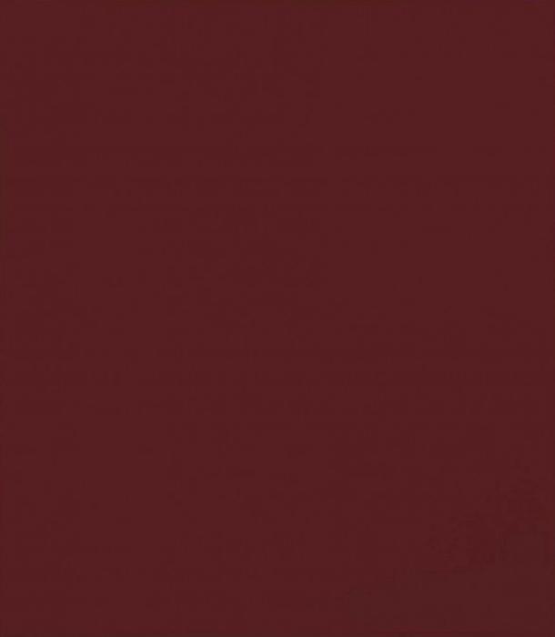 *Blood Red Mirror* Gerhard Richter.