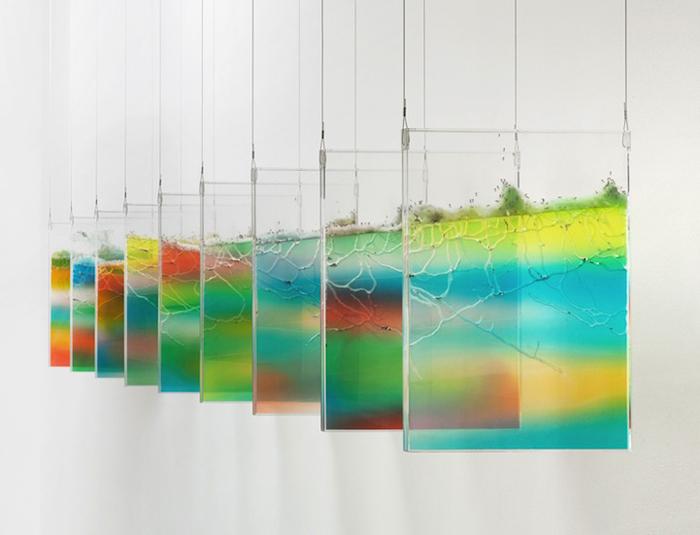 Плексигласовые полотна с живыми муравьями внутри.