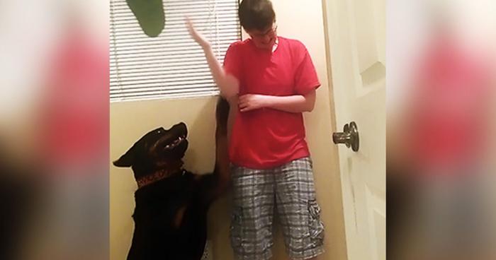 Собака спасает хозяйку в трудную минуту.