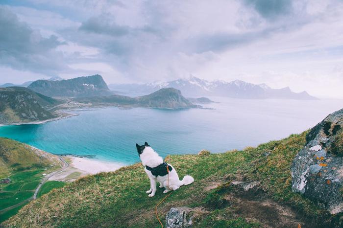 С видом на море.