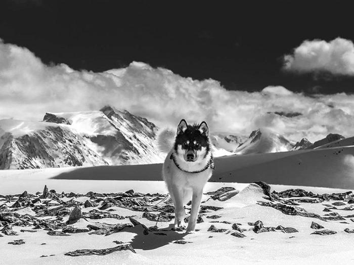 Акиак, путешествие зимой.