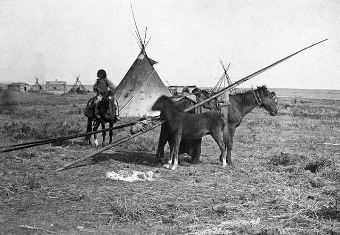 Поселение индейцев рядом с заливом Гудзон. Форт Калгари, Альберта, Канада, 1886г.  Автор фото: Alex Ross.