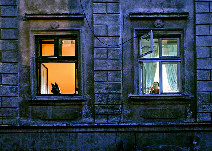 За окном. Фото: Александр Петросян.