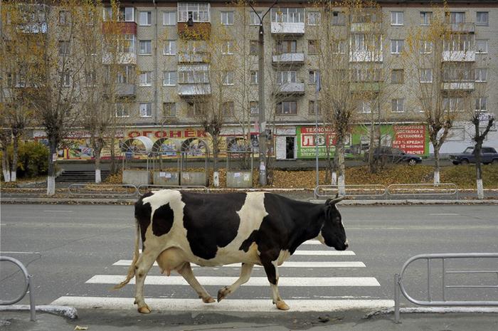Переход.  Фото: Александр Петросян.